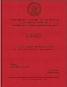 copertina tesi in tela rosso